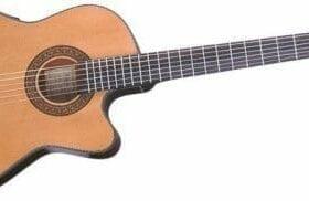 Ibanez GA Series GA5TCE Thinline Classical Acoustic-Electric Guitar Natural 22