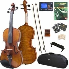 Cecilio 4/4 CVN-700 Highly Flamed 1-Piece Back Ebony Fitted Professional Solid Wood Violin 4